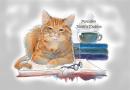 Domluvit se s kočkou