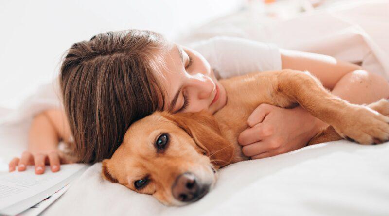 Tři čtvrtiny mazlíčků spí se svými majiteli v posteli. Cítíme se s nimi bezpečněji, vysvětlují chovatelé
